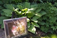 garden-tour-2019-3_orig
