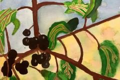 Jessen-Patel-Watercolour-Grade-9-CDS