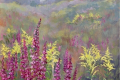 MBroome_2020_Purple-Loosestrife