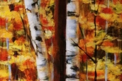 6.-PEarl-2021-Cottage-Birches-2