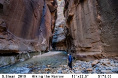 ssloan2019Hiking-the-Narrows